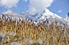 Annapurna2010small086