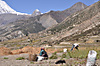 Annapurna2010small109