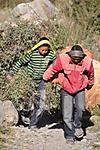 Annapurna2010small126