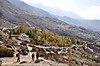 Annapurna2010small180